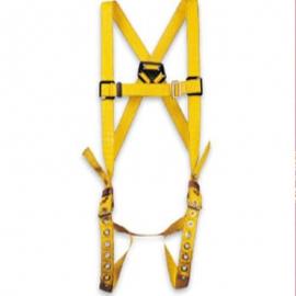 Honeywell North Durabilt Full Body Harness - 022FPB6981DP