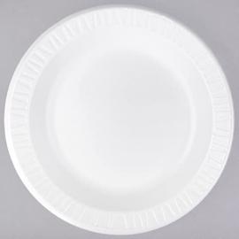 """Dart Solo White Foam Plate 10.25"""" Non Laminated - 4251174 - 500/cs"""