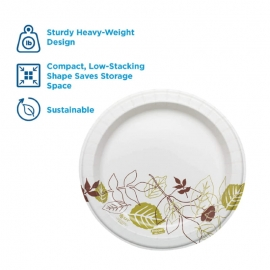 "DIXIE Pathways Coated Paper Plates 9"" Heavy Weight - GPSXP9PATH - 500/cs"