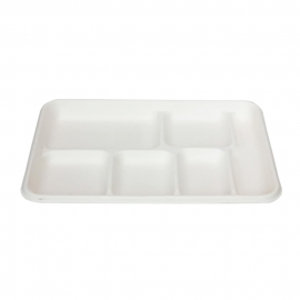 RiteEarth Bagasse Lunch Tray 6 Compartment - T106 - 400/cs